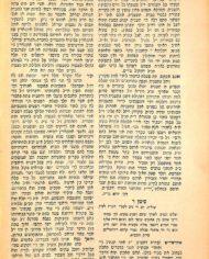 Auction 4 Batch 1 #23b Zicron Yehuda